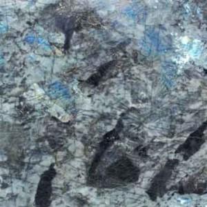 node1557