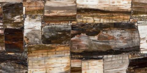 Petrified-Wood_Classic